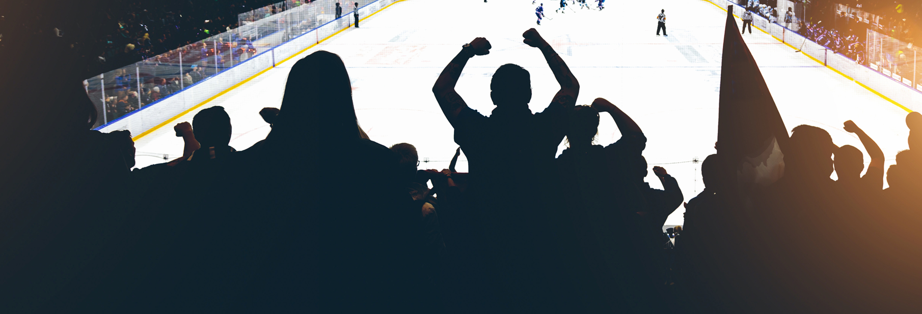 Hockey-crowd