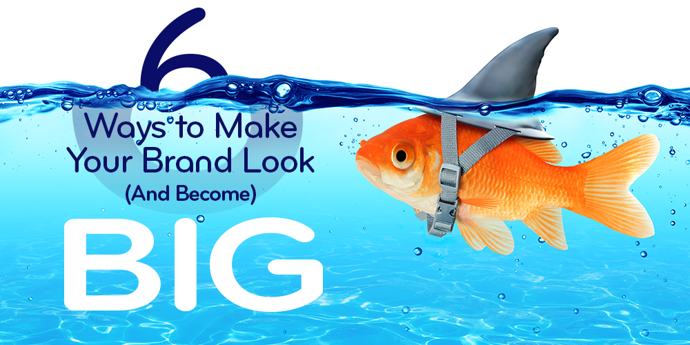 6 Ways to Make Your Brand Look (and Become) BIG